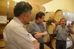 Visita a un'azienda agricola, produttrice di vino