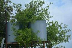 Cisterne raccolta acqua piovana