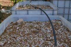 Sistema di bonifica dell'acqua piovana