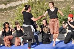 Balli palestinesi, ballerini internazionali